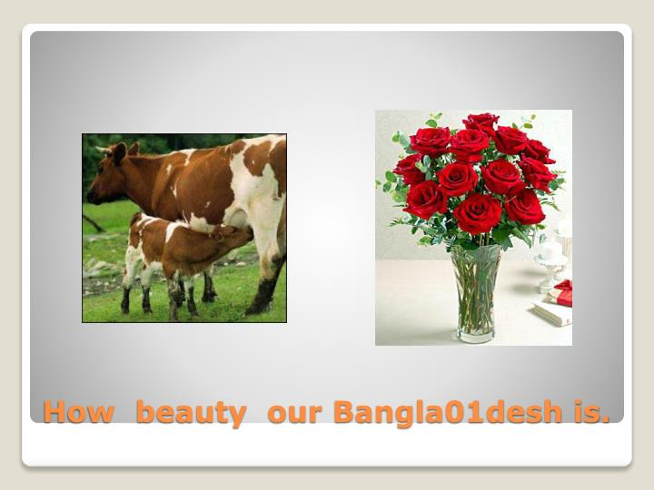 How beauty our bangla01desh is
