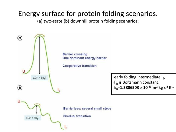 Energy surface for protein folding scenarios.