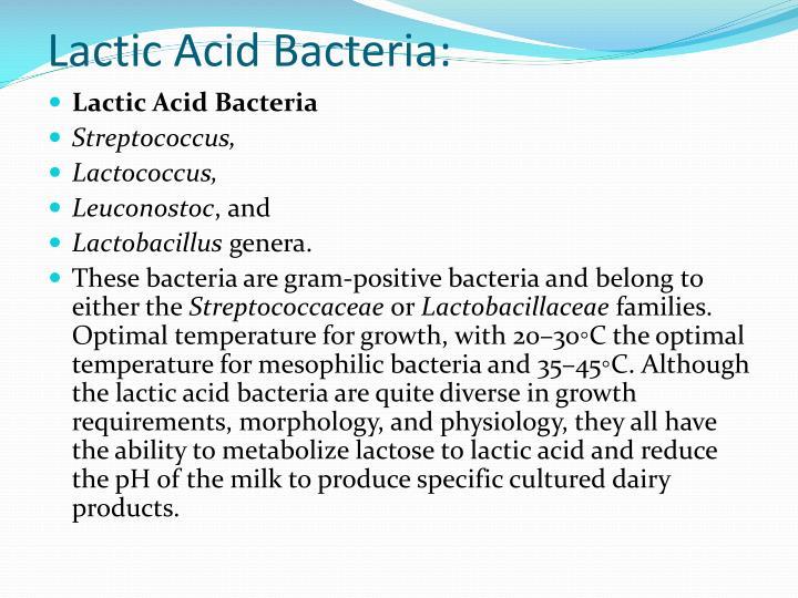 Lactic Acid Bacteria:
