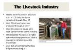 the livestock industry