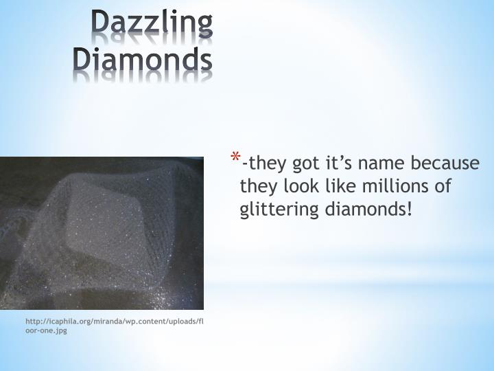 -they got it's name because they look like millions of glittering diamonds!