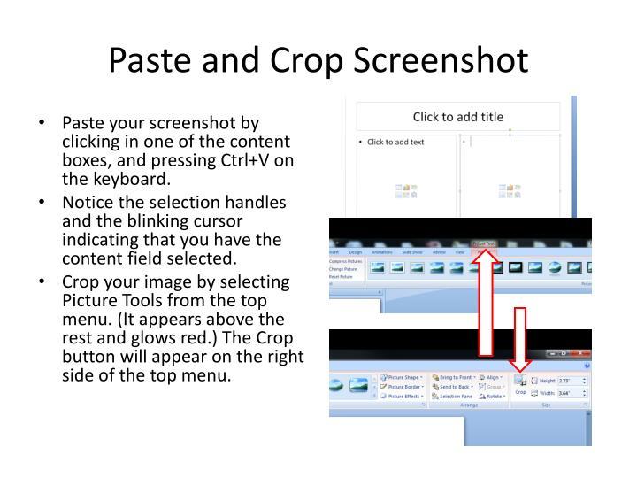 Paste and Crop Screenshot