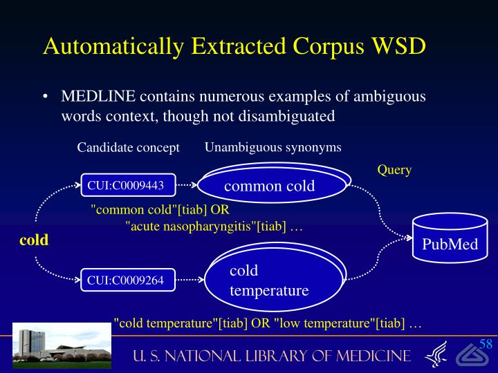 Automatically Extracted Corpus WSD