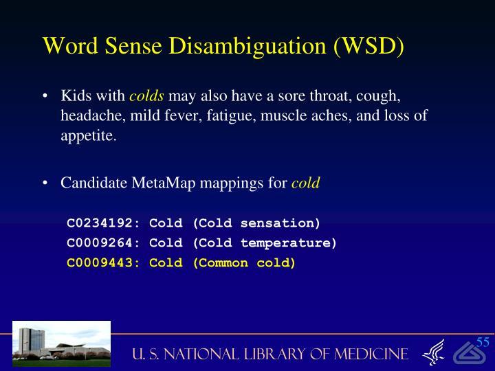 Word Sense Disambiguation (WSD)