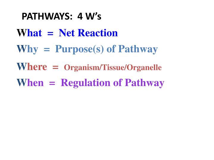 PATHWAYS:  4 W's