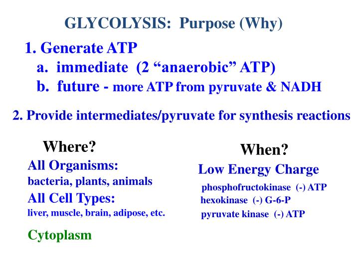 GLYCOLYSIS:  Purpose (Why)