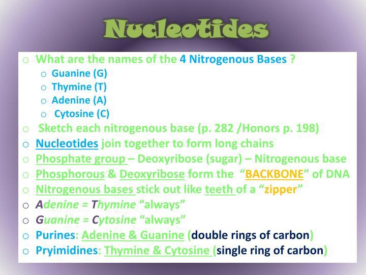 Nucleotides