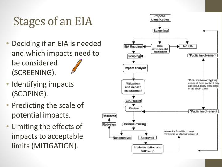 Stages of an EIA