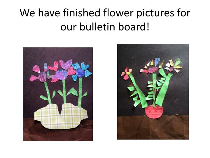 We have finished flower pictures for our bulletin board!