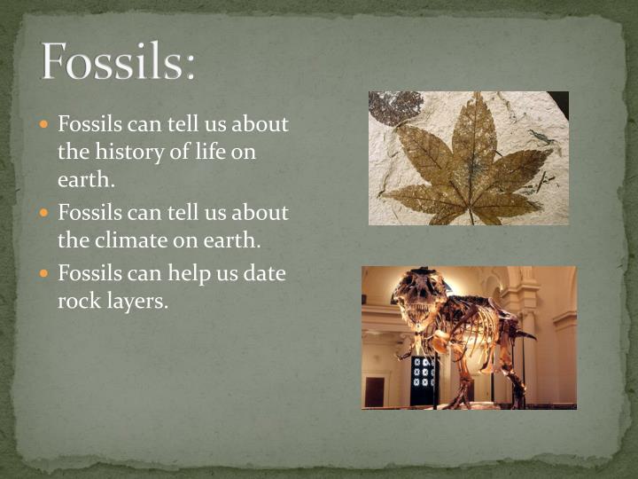 Fossils: