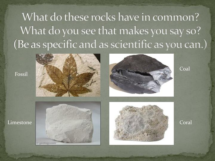 What do these rocks have in common?