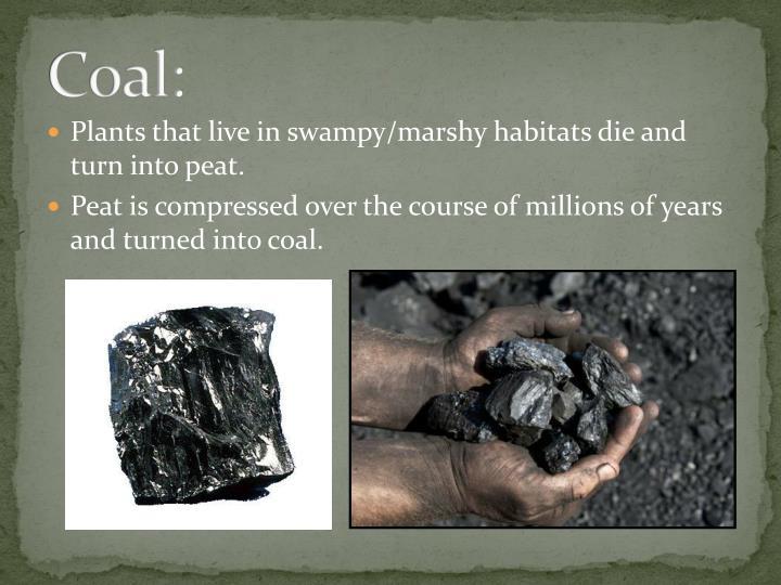Coal: