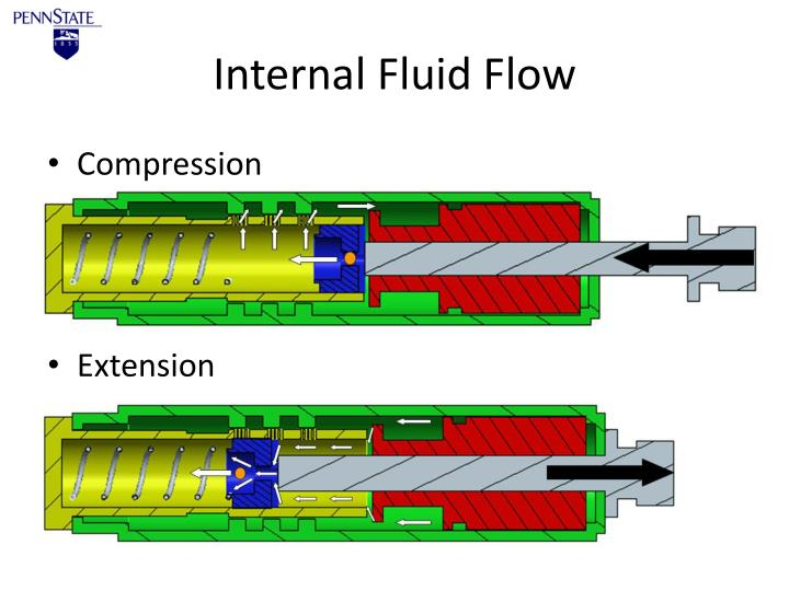 Internal Fluid Flow