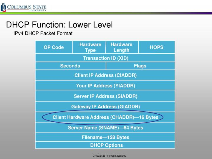 DHCP Function: Lower Level