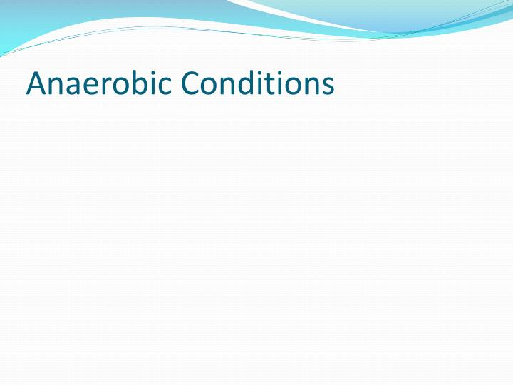 Anaerobic Conditions