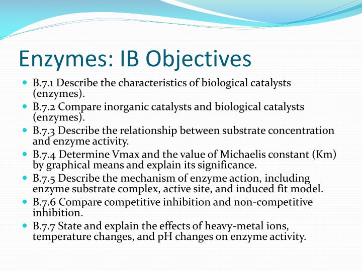 Enzymes: IB Objectives