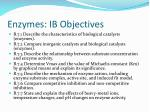 enzymes ib objectives