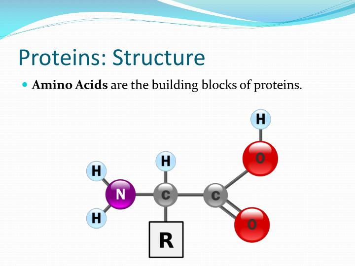Proteins: Structure
