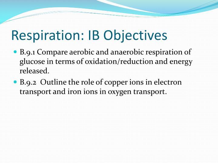 Respiration: IB Objectives