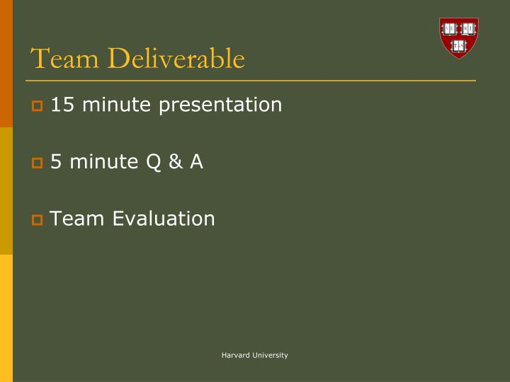 Team Deliverable