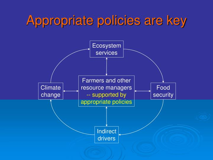 Appropriate policies are key