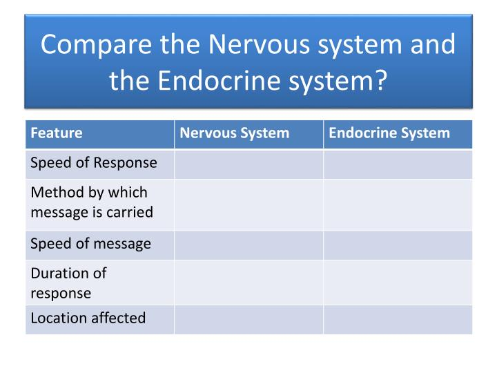 Compare the Nervous system and the Endocrine system?