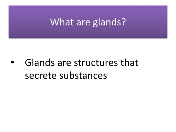 What are glands?