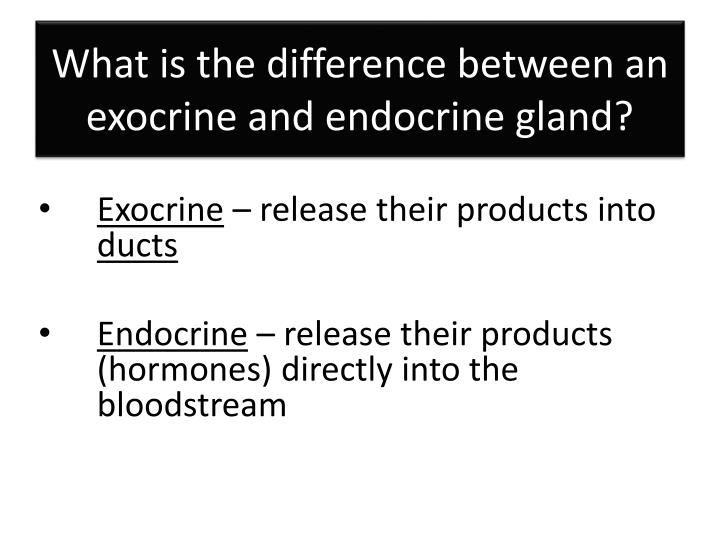 What is the difference between an exocrine and endocrine gland?