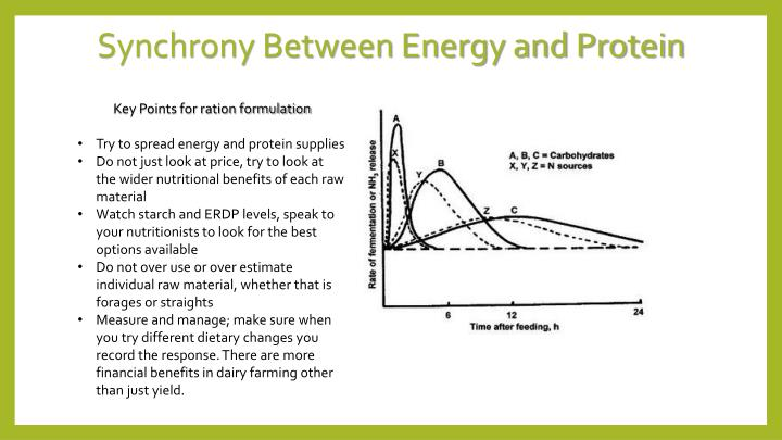 Synchrony Between Energy and Protein