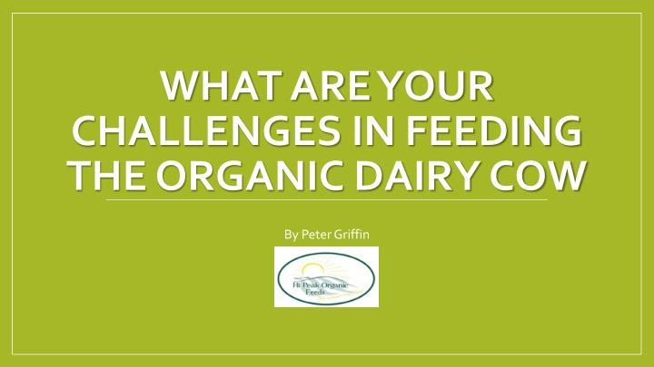 What are your challenges in feeding the organic dairy cow
