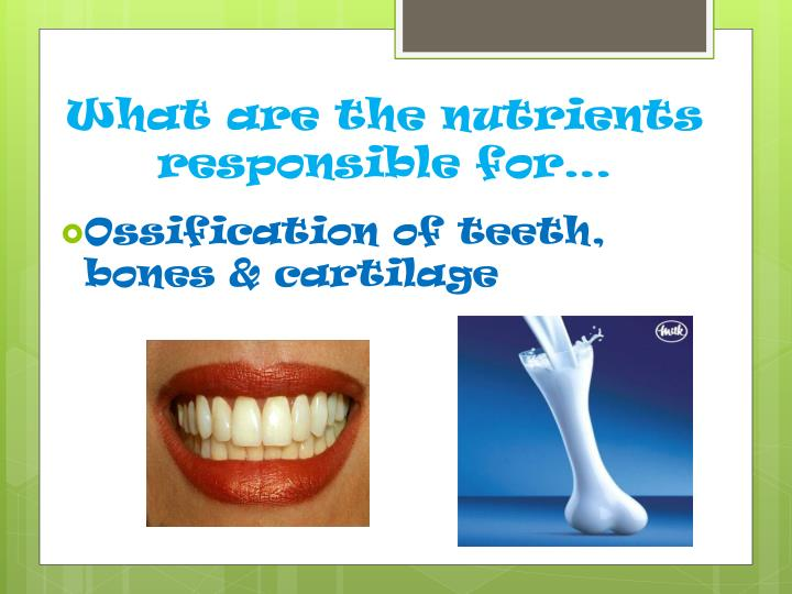 What are the nutrients responsible for…