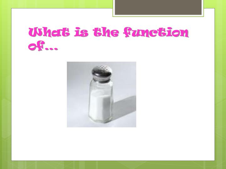 What is the function of…