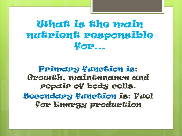 What is the main nutrient responsible for…