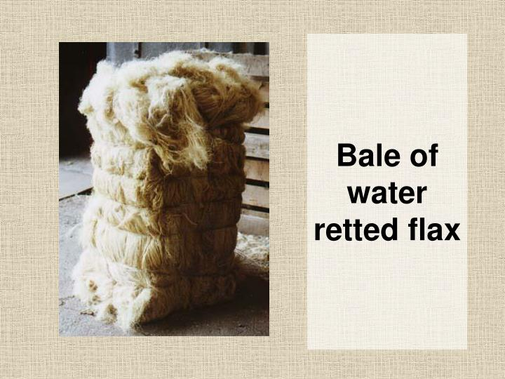 Bale of water retted flax