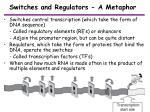 switches and regulators a metaphor