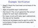 example verification