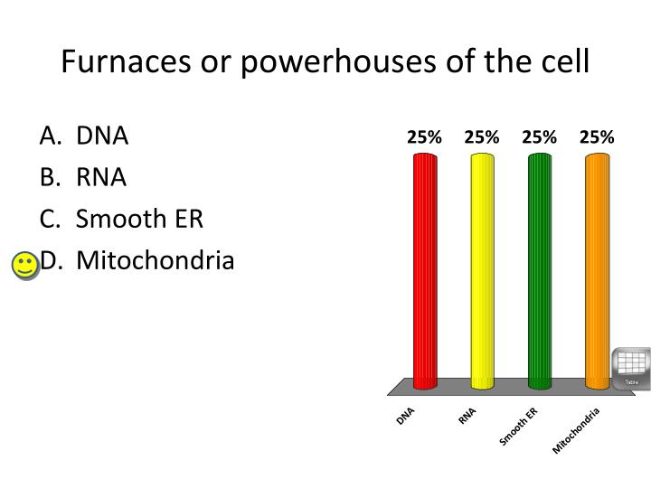 Furnaces or powerhouses of the cell