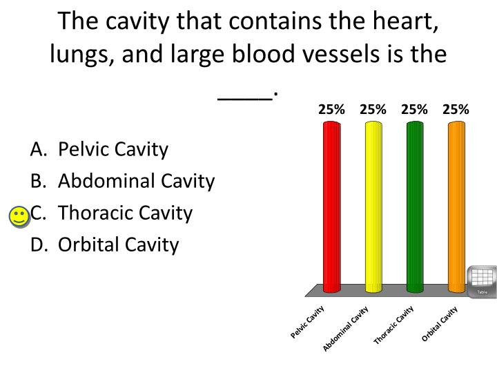 The cavity that contains the heart, lungs, and large blood vessels is the ____.