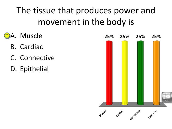 The tissue that produces power and movement in the body is