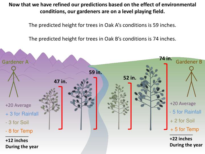 Now that we have refined our predictions based on the effect of environmental conditions, our gardeners are on a level playing field.