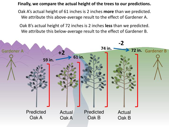Finally, we compare the actual height of the trees to our predictions.