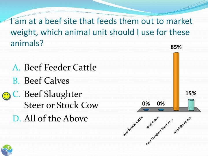 I am at a beef site that feeds them out to market weight, which animal unit should I use for these animals?