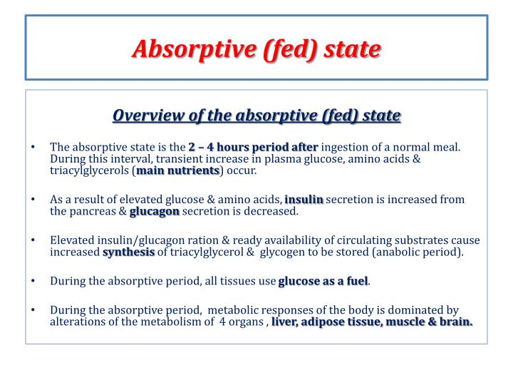 Absorptive fed state