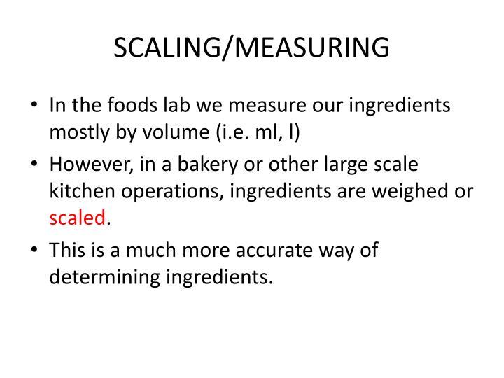 SCALING/MEASURING