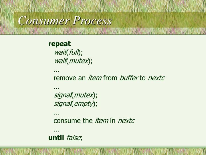 Consumer Process