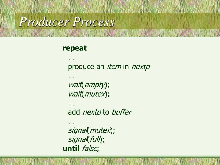 Producer Process
