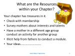 what are the resources within your chapter