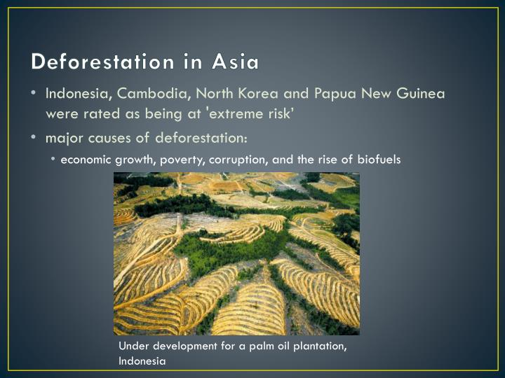 Deforestation in Asia