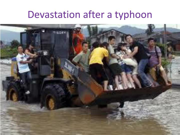 Devastation after a typhoon