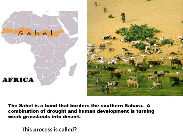 The Sahel is a band that borders the southern Sahara.  A combination of drought and human development is turning weak grasslands into desert.